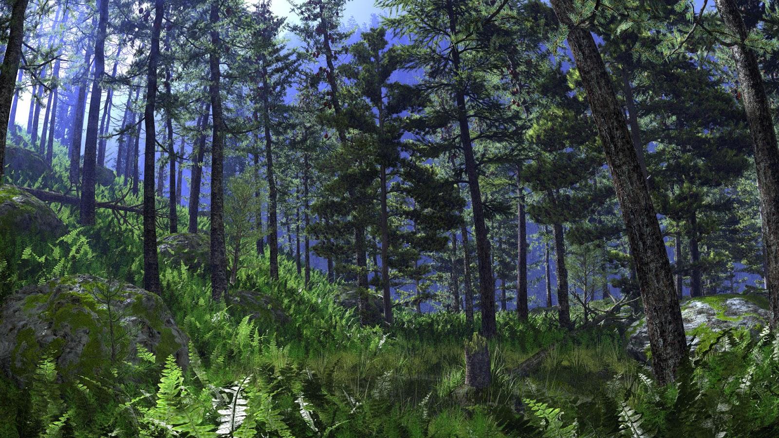 Foresta boreale biodiversità