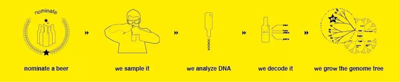 DNA nella birra