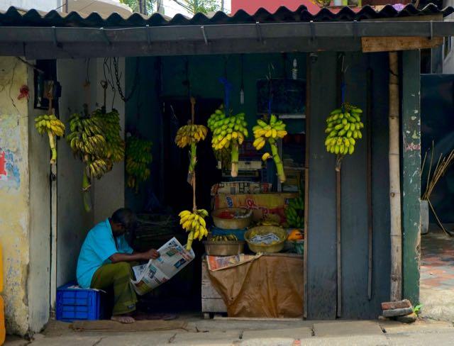 Un venditore di banane a Kandy, Sri Lanka