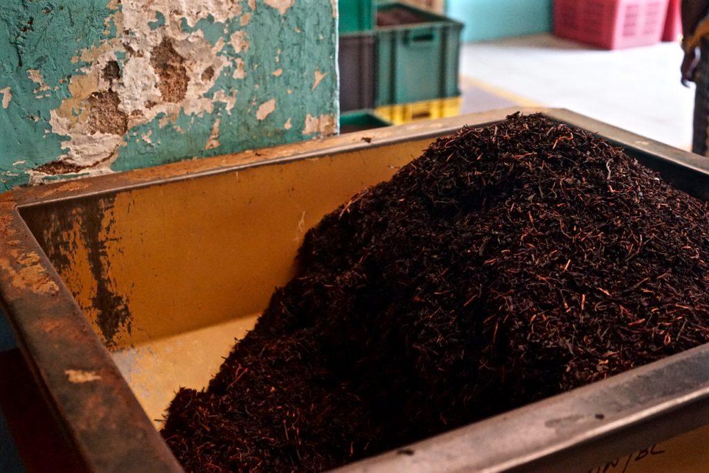 Fabbrica di tè Sri Lanka